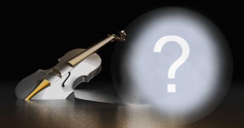 Linda montagem de violino. Adicione uma foto!