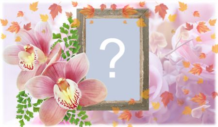 Frame of pink orchids, Create yours!