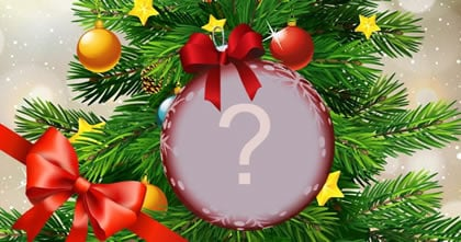 Which photo would you put on your Christmas tree?