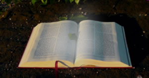 Gerador de Salmo 23 com foto! Faça o Seu!